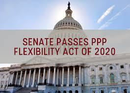 PPP Flex Act